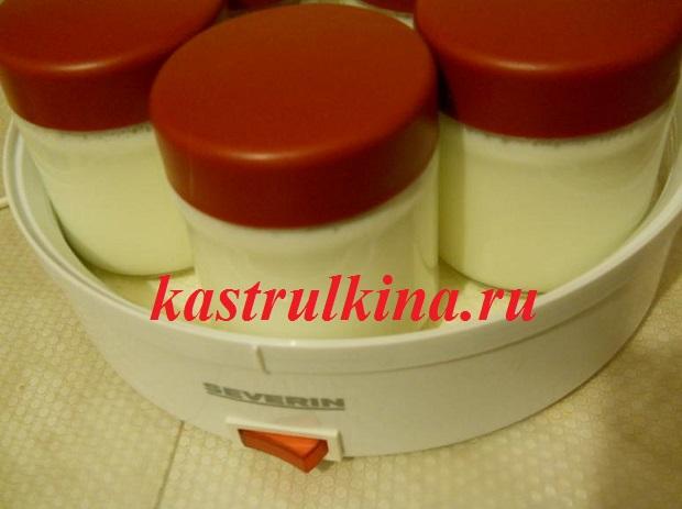 как приготовить йогурт с закваской эвиталия фото